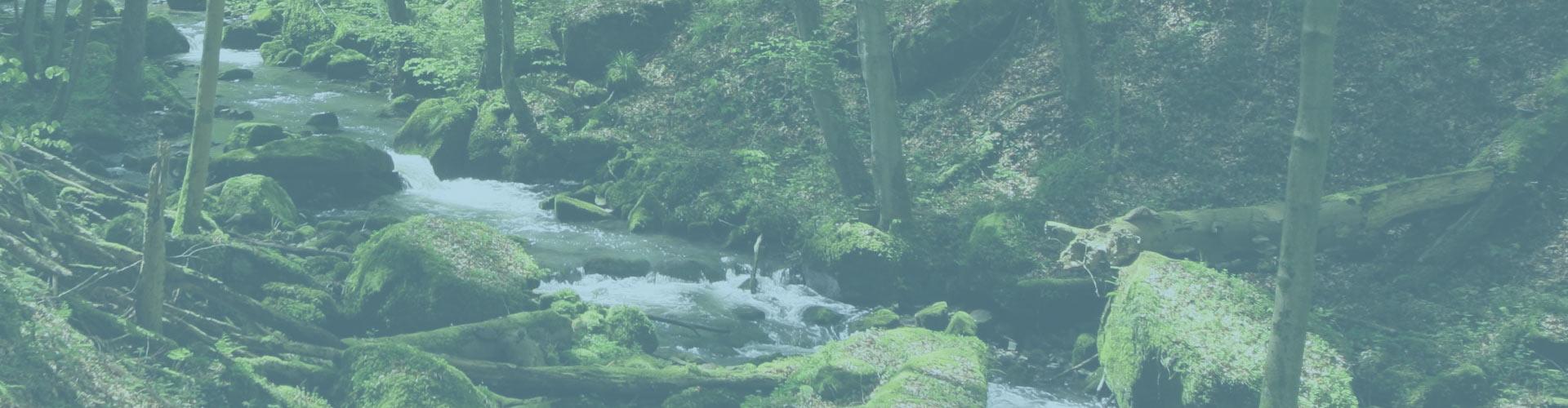river-slide1-fade